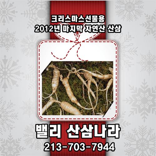 sansam2012-12.jpg